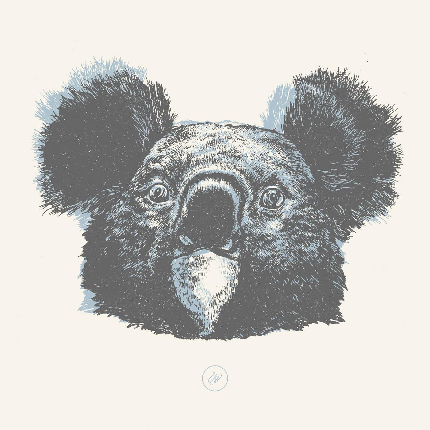 Joanna-Walczykowska-Koala